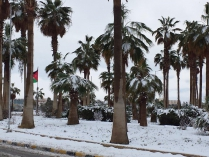 Wintereinbruch in Amman - Internationaler Flugplatz